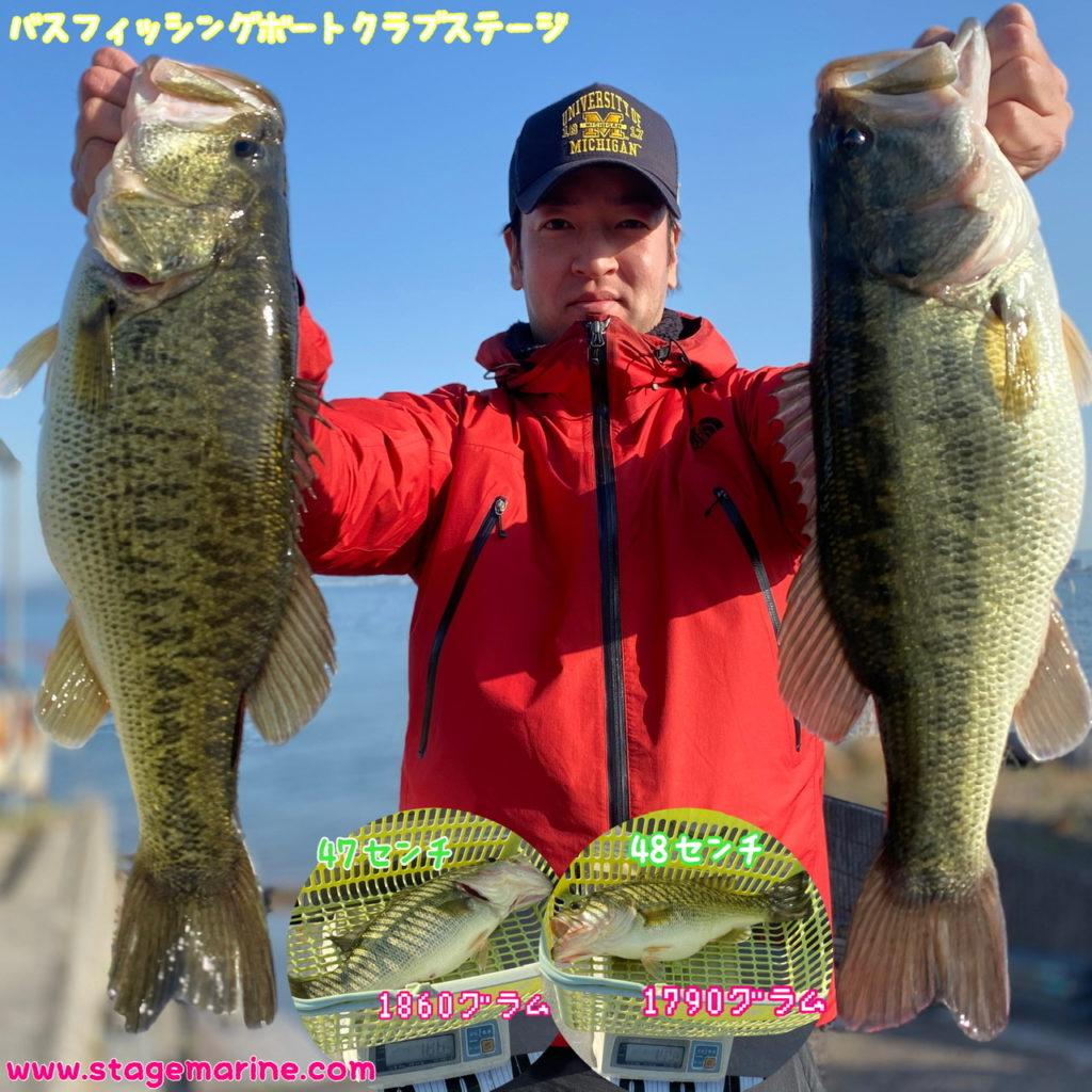 琵琶湖釣果速報
