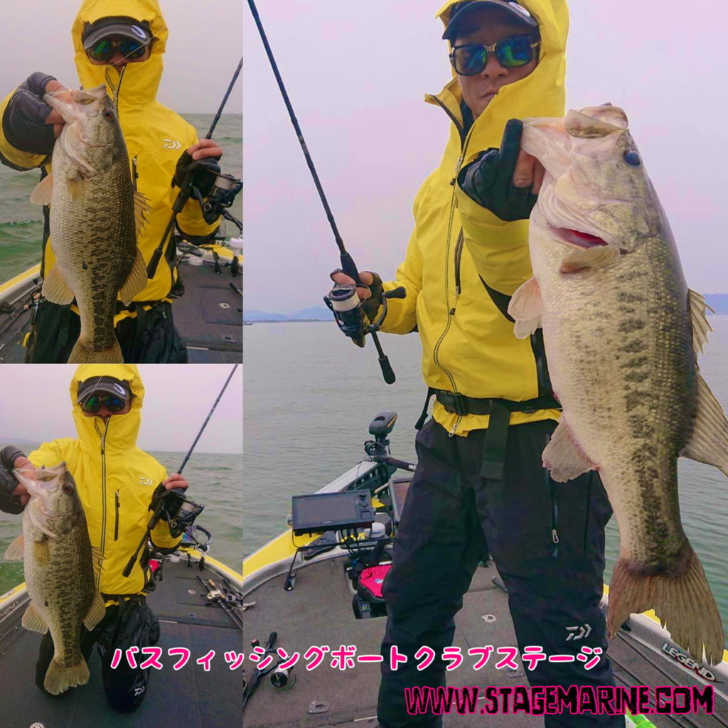 4月琵琶湖釣果速報情報